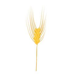Rye stalk icon cartoon style vector