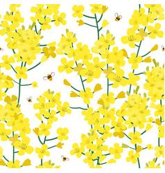 seamless rape plant pattern flower vector image