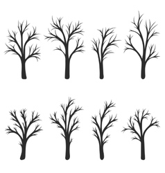 silhouette of trees vector image