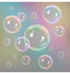 Soap bubbles on transparent background vector