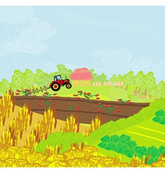 Tractor plowing field vector