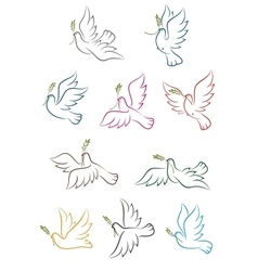 Flying doves with olive branch vector image vector image