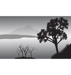 Silhouette of tree in lake vector image
