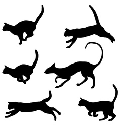 Cats collection - silhouette vector image vector image