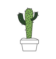 color sections silhouette of cactus with two vector image vector image