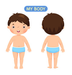 a boy showing parts of the body vector image