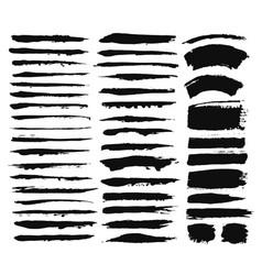 Calligraphic brush strokes vector