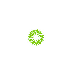 circle green leaf business logo vector image