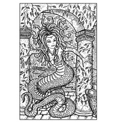 gorgon engraved fantasy vector image