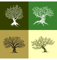 Olive trees icon set vector image
