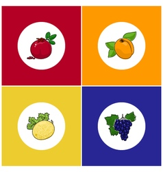 Round White Fruit Icons on Colorful Background vector image
