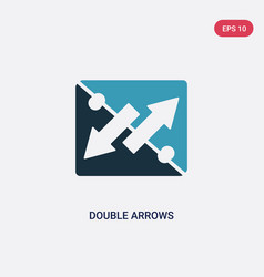 Two color double arrows icon from user interface vector