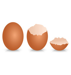 Broken egg shell design vector