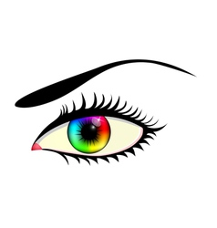 Eye with colorful iris vector