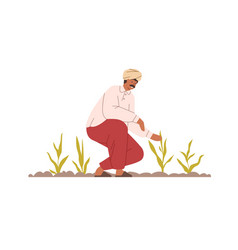Happy indian farmer working on organic agriculture vector