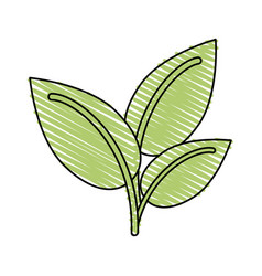 Plant leaves icon image vector