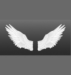 Realistic angel wings white isolated pair vector