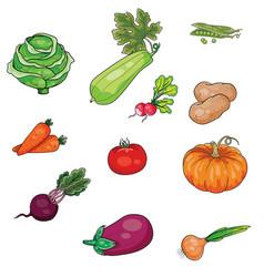 set vegetables diet vegetarianism stylization vector image