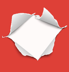 snatched middle red paper with torn edges vector image