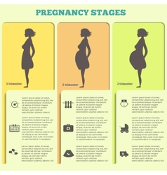 Pregnancy and birth infographics pregnancy stages vector image vector image