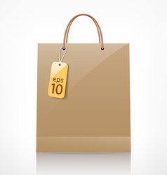 bag brown shopping vector image vector image
