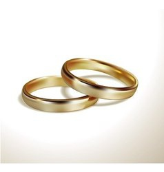 golden wedding rings vector image vector image