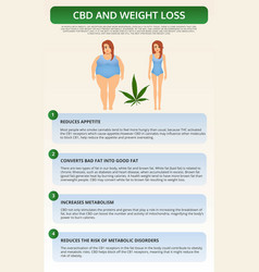 Cbd and weight loss vertical textbook infographic vector