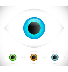 eyeball - eye icons vector image