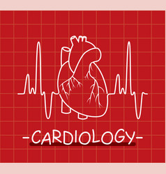 Human heart and heartbeat vector