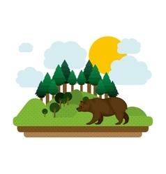 Isolated bear animal design vector