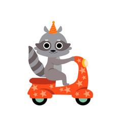 Raccoon riding on motorbike cute funny animal vector