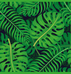 Tropical leaves on a dark background vector
