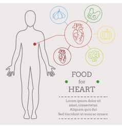 Food for heart vector image