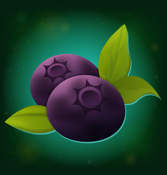 Forest blueberry with leaves icon vector