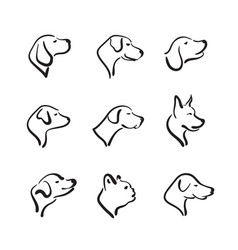 Group of hand drawn dog head on white background vector