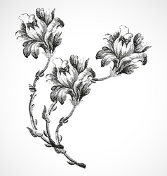 Hand drawn bouquet three flowers of lily vintage vector image