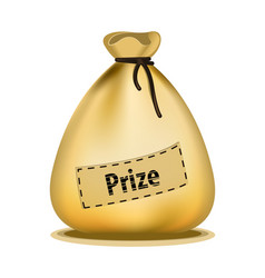 money bag with text prize vector image