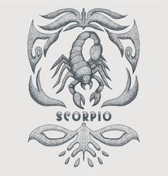 scorpio zodiac vintage vector image