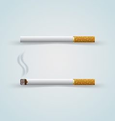 Two cigarettes vector image