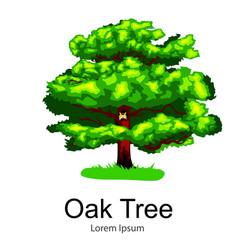 cartoon isolated oak summer tree on a white vector image