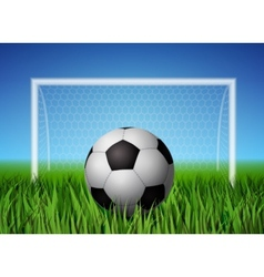Soccer ball and grass field vector image
