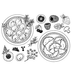 traditional russian food dumplings in a plate and vector image