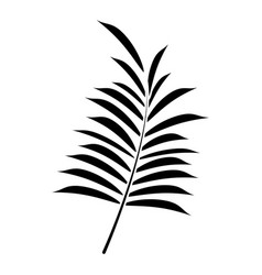 leave palm tropical flora pictogram vector image