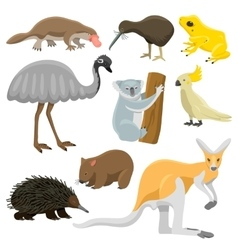 Australia wild animals cartoon collection vector image vector image
