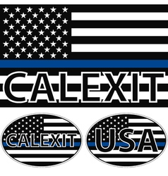 USA flag blue stripe calexit vector image vector image