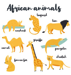 big set of african animals on white background vector image