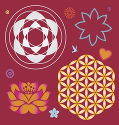 Collection symbols a lotus and life flower vector