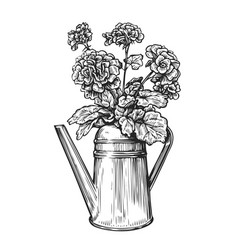 Flowers in a pot bouquet and watering can in vector
