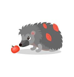 hedgehog with red apple cute animal cartoon vector image