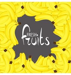 Lots of tasty bananas vector image